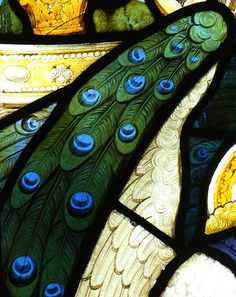Peacock feathers in stained glass