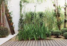 À esq., a escada foi reaproveitada para organizar os vasos com falenópsis (1) e dinheiro-em-penca (4). Delimitada pelo deque de madeira cumaru, a vista verde da moradora tem jasmim-italiano (2), que cresce com o intuito de forrar o muro, além de orquídeas-bambu (3), agapantos (5) e buxinhos (6)