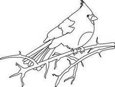 Baby Bird Coloring Pages - Bing Images