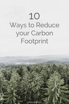10 Ways to Reduce your Carbon Footprint – Pela Case