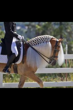 Dressage... I have to do this to Hubba's mane! beautiful!
