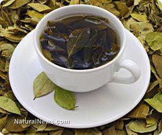 The wonders of herbal teas