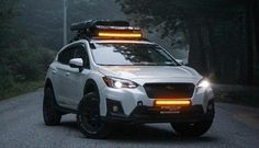 Subaru Outback Lifted, Subaru Outback Offroad, Subaru Forester Lifted, Lifted Subaru, Subaru Wagon, Subaru Cars, Subaru Crosstrek Accessories, Overland Gear, Colin Mcrae