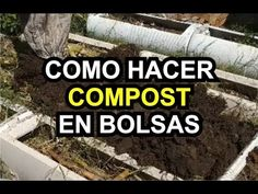Exercise, Youtube, Victoria, Gardens, Paper, Plant Propagation, Ejercicio, Excercise, Work Outs