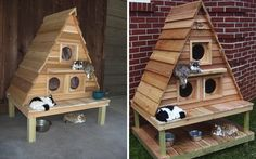 Triplex For Cats A Weatherproof Lodge For Outdoor Cats