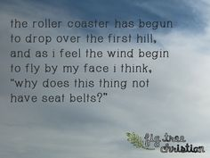 The Roller Coaster Roller Coaster, Coasters, Meditation, Spirituality, Spaces, Feelings, Quotes, Qoutes, Dating