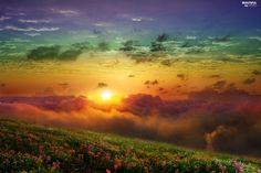 sun, west, color, Meadow, clouds
