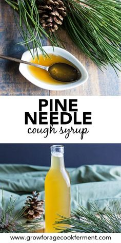 Make this pine needle cough syrup with foraged pine needles to help soothe a sor. - Make this pine needle cough syrup with foraged pine needles to help soothe a sore throat and ease c - Natural Health Remedies, Natural Cures, Natural Healing, Herbal Remedies, Natural Treatments, Holistic Healing, Natural Foods, Natural Beauty, Natural Medicine