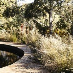 Fairfeild_Sam Cox Landscapes Fresh water, Castlemaine slate and poas Australian Garden Design, Australian Native Garden, Landscaping With Rocks, Landscaping Tips, Bush Garden, Hill Garden, Pool Cost, Building A Pond, Pool Landscape Design
