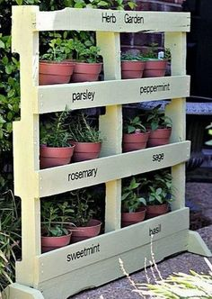 Make an Herb Garden with a Pallet. Some pallets contain contaminants that we can't detect with the eye (i. listeria/e coli). This is the safe way to have the herb garden pallet planter. Herb Garden Pallet, Pallets Garden, Diy Garden, Home And Garden, Pallet Gardening, Pallet Planters, Verticle Herb Garden, Pallet Greenhouse, Gravel Garden