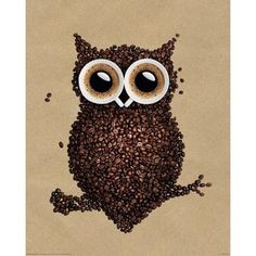 Plakat Mini COFFEE OWLIE - 13,50
