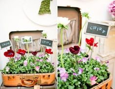 Styling with Vintage Suitcases