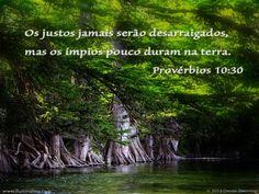 Provérbios 10:30