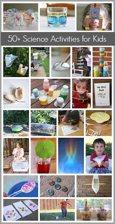 50+ Science and STEM Activities for Kids: Science experiments and projects on sound, plants, chemical reactions, animals, engineering, and more! ~ BuggyandBuddy.com
