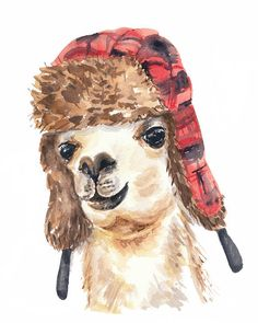 Watercolor PRINT - Llama Watercolor Painting, 11x14 Illustration, Trapper Hat, Canadian Art