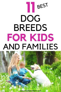 Top 11 best dog breeds for kids and families