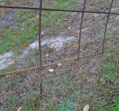 Mini Hoop House made of concrete reinforcing mesh.