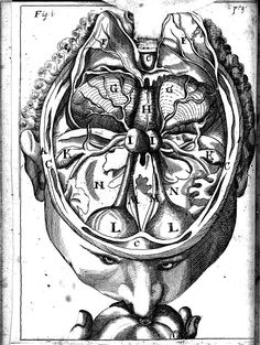 Bartisch, Georg. Ophthalmodouleia... [Dresde], 1686. See 1583 Ed. https://pinterest.com/pin/287386019954431541/ - https://pinterest.com/pin/287386019948644563/