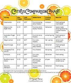 Tyrant Farm's: How to Grow Citrus in a pot with a Citrus Comparison Chart  https://www.tyrantfarms.com/how-to-grow-citrus-in-pots-in-any-climate-zone/