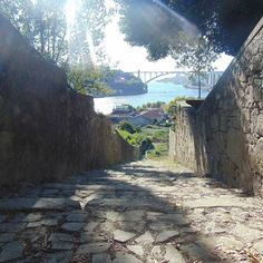 #stairs #naturebeauty #nature #river #douro #palaciodecristal #old #history #romanticgarden #bridge #porto #portugal #photograph #photography #photographylovers by anniekoalaaa