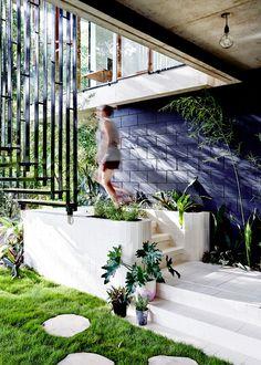 Tropical Planchonella House in Australia