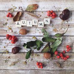 **Country Charm** · Autumn LoveHello ...
