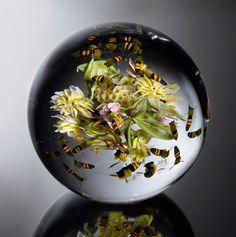 Paul Stankard - glass work
