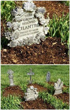 Herb Garden Graveyard