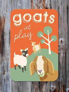 goats at play
