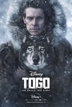 Trailer, clips, featurette, images and poster for the Disney+ adventure drama TOGO starring Willem Dafoe. Film Disney, Disney Movies, Disney Disney, Sibirsk Husky, Movies To Watch, Good Movies, Movie Titles, Movie Posters, Series Movies