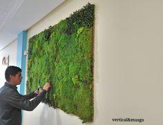 De #vertical y #musgo colaborando con #decoracesped para el CENACHERO en Garrucha (Almería) #Jardín Vertical de #musgos preservados y #líquenes con detalles de hiedra artificial