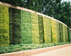 Inspirasi pagar dengan tanaman ~ Teknologi Konstruksi Arsitektur