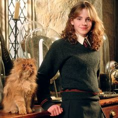 Which pet would you choose? #HarryPotter