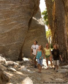 Local Tip: 11 Things To Do in Palm Springs With Kids
