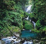 Milford trek, New Zealand