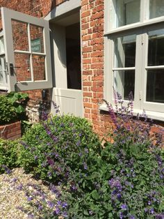 Gorgeous Front Door and Windows: Farrow and Ball Hardwick White. Hollyhock Holiday Cottage North Norfolk