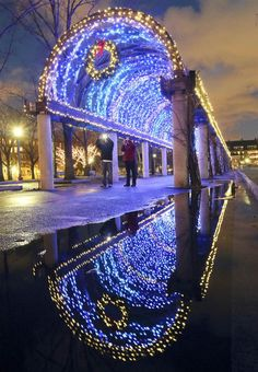 Holiday lights adorn a walkway in Christopher Columbus park on the waterfront in Boston, Dec. Boston is the best city in America. Holiday Lights, Christmas Lights, Christmas Ornaments, Winter Christmas, Christmas Holidays, Christmas Markets, Outdoor Christmas, Christmas Ideas, Christmas In America