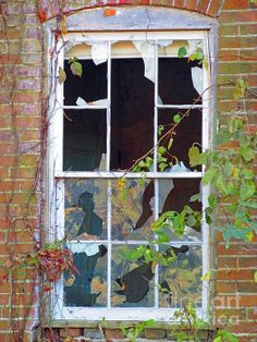 Broken Dreams by Jamie Smith Wildlife, Landscape, Wall Art, Gallery, Awesome, Nature, Prints, Photography, Painting