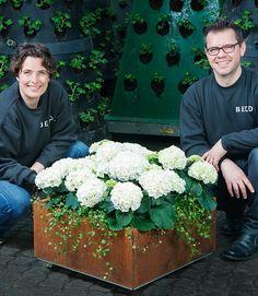 BEDD plantekasser og høybed i stål, kan enkelt kan settes sammen på spennende måter. Egnet for balkong, terrasse og hage. 100% Norsk