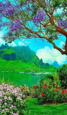 Beautiful Nature Pictures, Beautiful Nature Wallpaper, Nature Photos, Amazing Nature, Beautiful Landscapes, Colorful Wallpaper, Beautiful Places, Studio Background Images, Photo Background Images