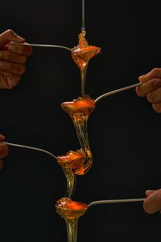 Honey Tasting - Dimitris Vlaikos - Portrait Photographer Athens Greece Athens Greece, Portrait Photographers, Food Photography, Honey, Creative