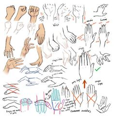 Hand Drawing Reference Guide | Drawing | Scoop.it