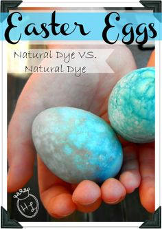 Easter Eggs l Natural Dye comparison with homemade dyes l Homestead Lady
