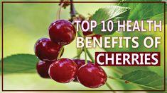 Top 10 health benefits of Cherries very helpful glamorous skin Health Benefits Of Cherries, 10 News, Cherry, Fruit, Top, Prunus, Crop Shirt, Shirts