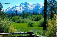 Mt. Tallac across meadow at Taylor Creek, Lake Tahoe