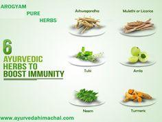 Ayurvedic Herbs, Turmeric, Herbalism, Beauty Hacks, Pure Products, Breakfast, Food, Beauty Tricks, Meal