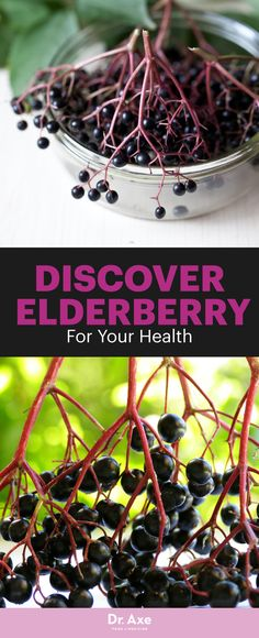 Looking for a natural remedy that has a very long history of medicinal use? There's evidence that the elderberry may have been cultivated by prehistoric man.