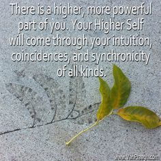 James Van Praagh Quote: There is a higher more powerful part of you.  Your Higher Self will come through your intuition, coincidences, and synchronicity of all kinds.  www.vanpraagh.com