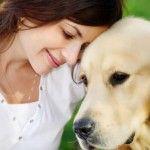 Dog Treat Recipe: Pumpkin Treats FOR DOG BAD BREATH