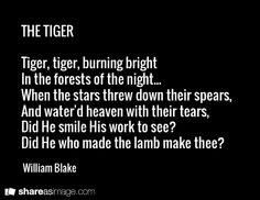 "The Tiger (1794 ) by William Blake. Alan Paton author of 'Cry, the Beloved Country' once wrote: 'I would like to have written one of the greatest poems in the English language—William Blake's ""Tiger, Tiger Burning Bright"", with that verse that asks in the simplest words the question which has troubled the mind of man…for centuries: ""When the stars threw down their spears / And watered heaven with their tears, / Did he smile his work to see? / Did he who made the lamb make thee?"""